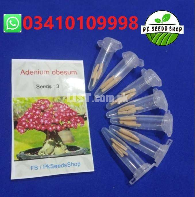 Flowers seeds Home Shipping All Pakistan