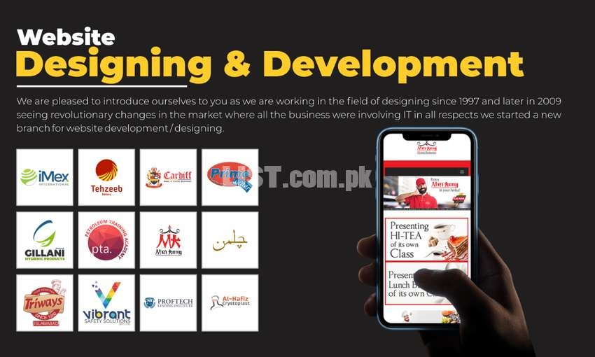 Professional Customized Website Designing & Development  with SEO