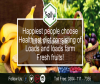 Online Fruit Shopping in Lahore