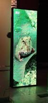Indoor & Outdoor SMD / LED Advertising Screens And Its Spare Parts
