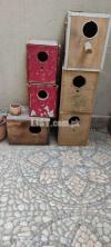 Box's and doli for sale